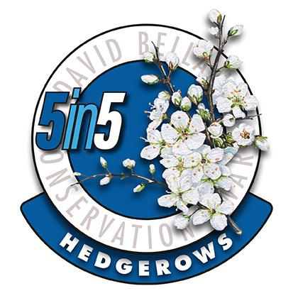 5in5hedgerows2017-72