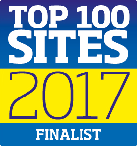 Top 100 2017 Finalist cropped