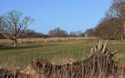 Weekly park runs at local stately homes